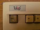 PC - Tulip PC Compact 2_41