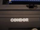 Condor_4