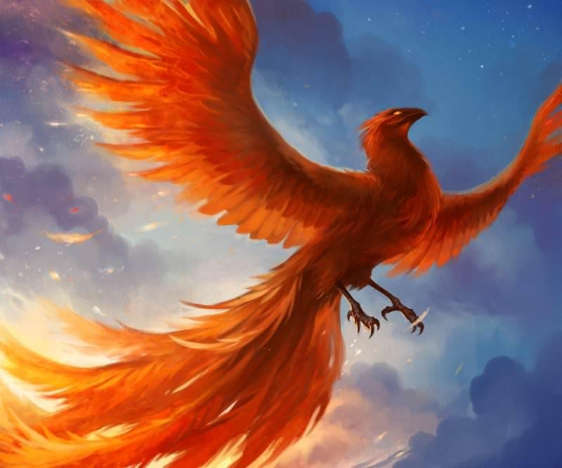 phoenix_by_sandara-d4o2ewx.jpg