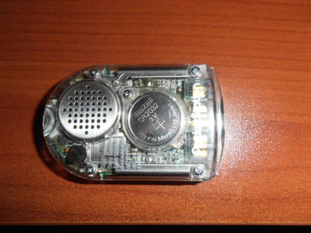 P8010003.JPG